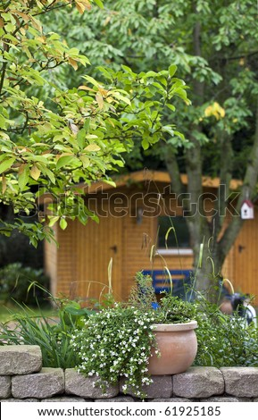 flowers in a terracotta flowerpot. view from the terrace to the backyard. (garden shed  in the background) - stock photo