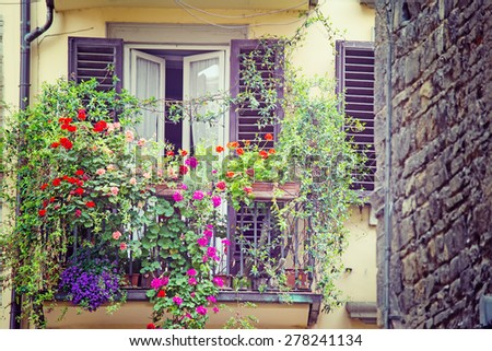 flowers in a vintage balcony in Florence, Italy - stock photo
