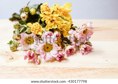 flowers in blurred and soft style with selective focus