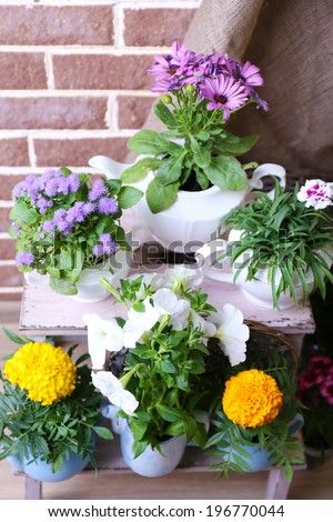 Flowers in  decorative pots on wooden ladder, on bricks background