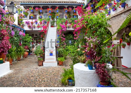 Flowers in flowerpot on the walls on streets of Cordoba, Spain - Patio Fest, 10 of May, 2013 - stock photo