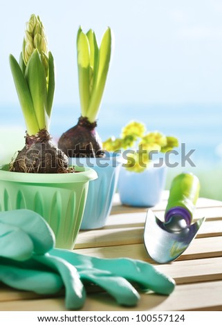 Flowers in flowerpots and  shovel against blue sky - stock photo