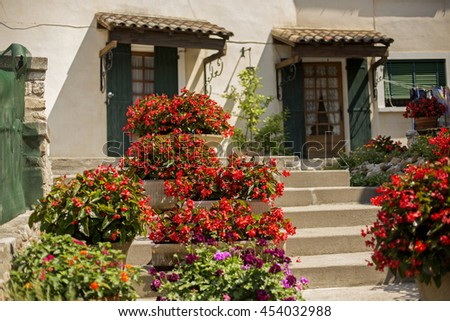 Flowers in front of a French House