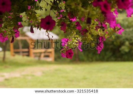 Flowers in front of wood arbor