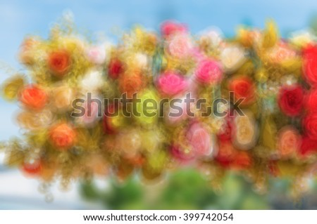 Flowers in pastel styles.Background of Beautiful flower decoration. Process with shape blur style. de focused.