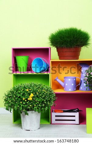 Flowers in pots with color boxes and instruments on wall background