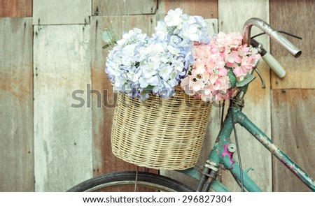 Flowers in Potted On bicycle - stock photo