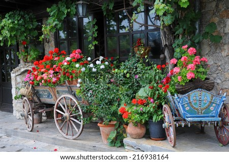 Flowers in the carts and planters in the city of Veliko Tarnovo in Bulgaria - stock photo