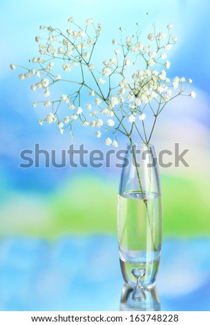 Flowers in vase on natural background - stock photo