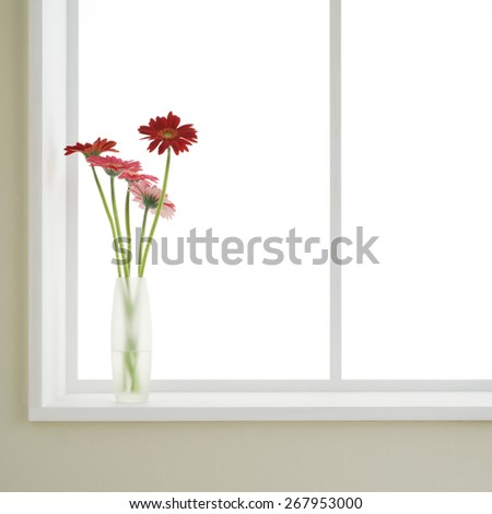 flowers in vase with window - stock photo