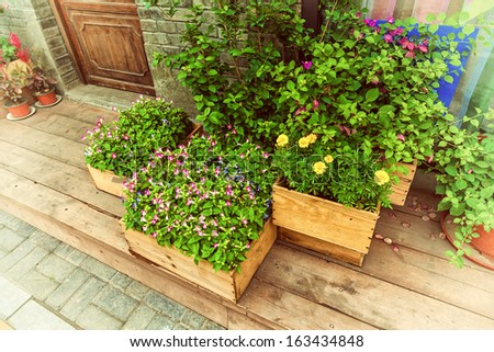 Flowers in wooden pot at the store entrance - stock photo