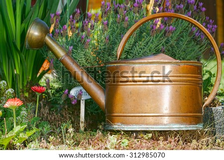 Flowers, lavender and a old watering can in the home garden