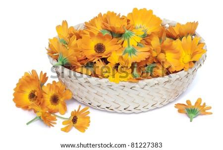 5.216 tấm ảnh tuyệt đẹp về hoa khô đựng trong giỏ, sẽ mang lại nhiều ý tưởng độc đáo cho thiết kế của bạn