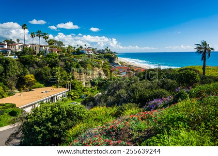 Flowers on a hill and view of houses and the Pacific Ocean in San Clemente, California. - stock photo