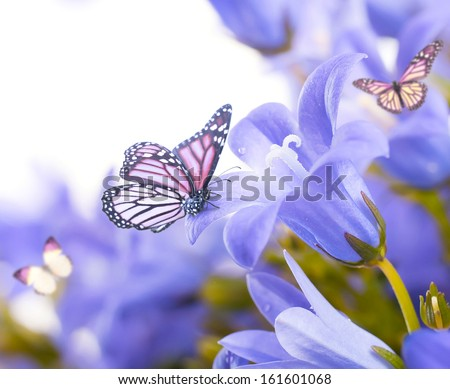 Flowers on a white background, dark blue hand bells and butterfly - stock photo