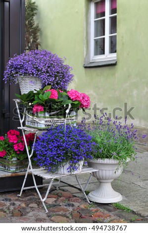 Flowers on display, plants by horticulture shop