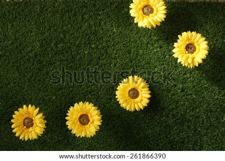 flowers on grass - stock photo