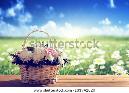 flowers on table and spring field - stock photo