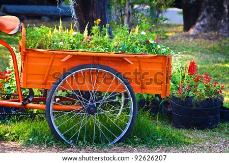 Flowers on The back of Tricycle