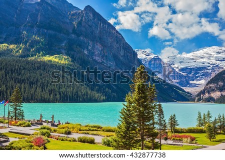 Flowers on the embankment of glacial Lake Louise.  Emerald Lake is surrounded by mountains, glaciers and pine forests. Banff National Park, Rocky Mountains, Canada