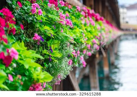 Flowers on The famous wooden Chapel Bridge (Kapellbrucke) in Lucerne city in Switzerland - stock photo