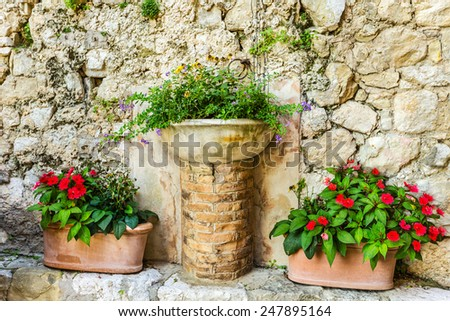 Flowers on the street, Alpine Provence, France. - stock photo