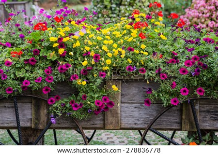 Flowers on the wagon - stock photo
