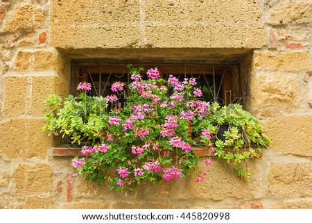 Flowers on the window of traditional Italian house,Italy
