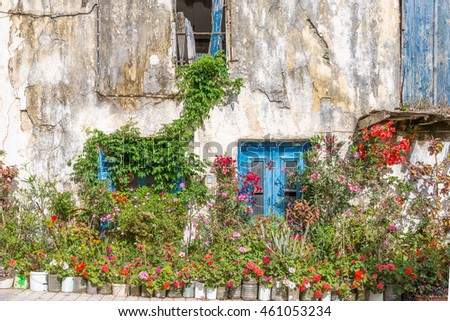 Flowers, ornamental plants and greenery at a house in Paleochora in the south-west of Crete. The village is situated on a mainland.