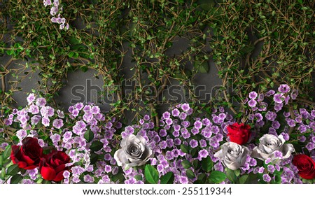 flowers rose holiday background on gray wall - stock photo