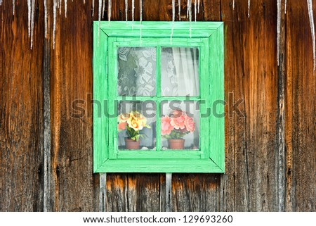 Flowers seen through a wooden window of an old house. - stock photo