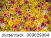 Flowers texture background - stock photo