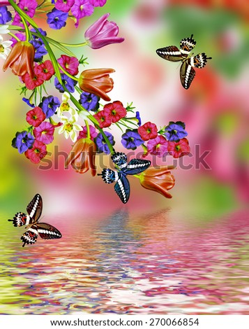 flowers tulips and butterflies - stock photo