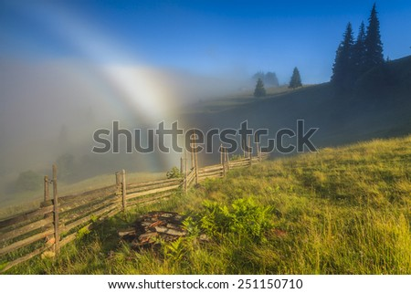 Flowery meadow in the mountains on the background of cloudy sky and rainbow. - stock photo