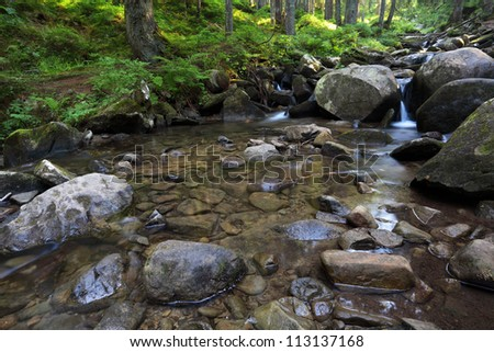 flowing mountain stream with transparent water and stones on bottom