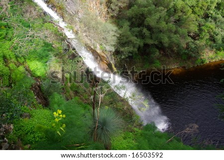 Flowing stream at Waterfall Gully in the Cleland Valley National Park at the base of Mount Lofty, Adelaide, Australia. - stock photo
