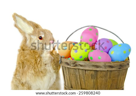 fluffy bunny with polka dot Easter eggs in wooden bushel basket isolated on white - stock photo