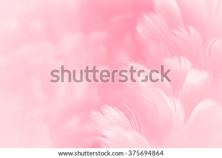 Fluffy cherry blossom pink feather fashion design background - Happy Valentine fuzzy textured soft focused photograph - Fashion Color Trends Spring Summer 2016