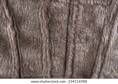 Fluffy color structure of fur of an animal - stock photo