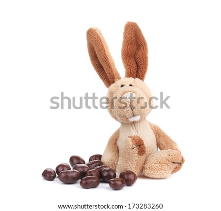 Fluffy easter rabbit with bonbons. Isolated on a white background.