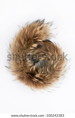 Fluffy folded piece of fur on a gray background