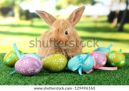 Fluffy foxy rabbit on grass with Easter eggs in park - stock photo