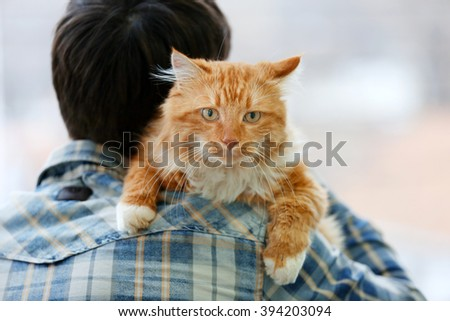 Fluffy red cat sitting on a man's shoulder - stock photo