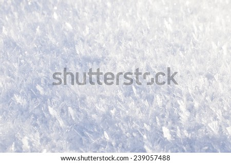 fluffy snow closeup outdoors.  - stock photo