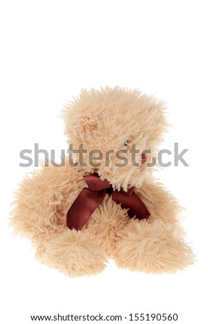 Fluffy teddy bear isolated on white - stock photo