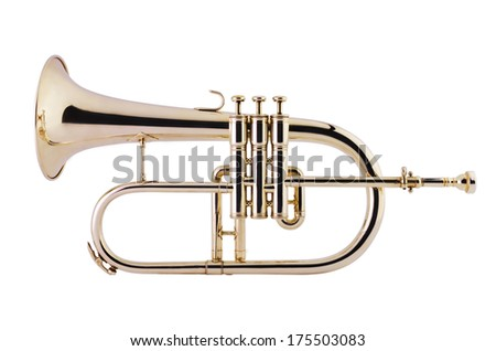 Flugelhorn on white background, Studio Shot