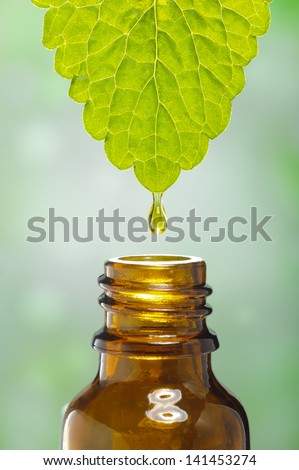 fluid drops down from leaf as symbol for alternative herbal medicine - stock photo