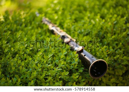 Flute in the grass
