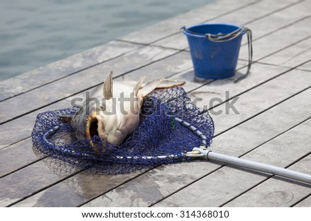 Fly-fisherman fishing in a lake. - (Selective focus) - stock photo