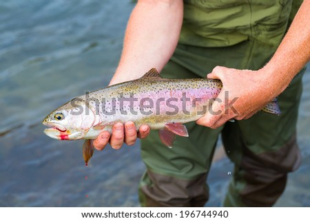 Fly fisherman holding a trophy redside rainbow trout native to the Deschutes River in Oregon.